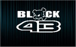 X2 stickers KEN BLOCK (2)